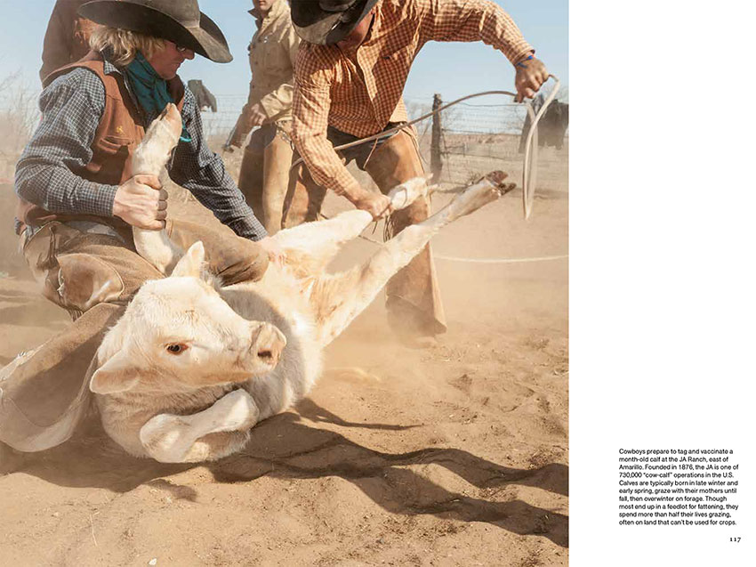 NatGeo_Meat_Tearsheets-5